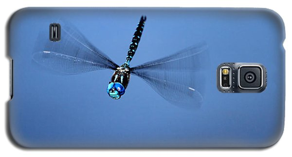 Galaxy S5 Case featuring the photograph Canada Darner Dragonfly Flying by Peggy Collins