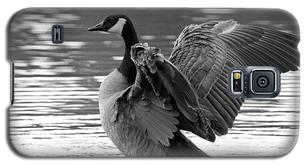 Canada Goose Black And White Galaxy S5 Case
