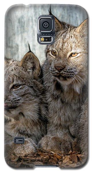 Canada Lynx Galaxy S5 Case