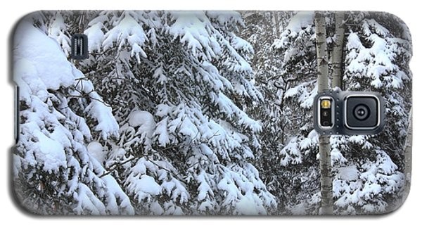 Canadian Forest - Winter Snowfall Galaxy S5 Case