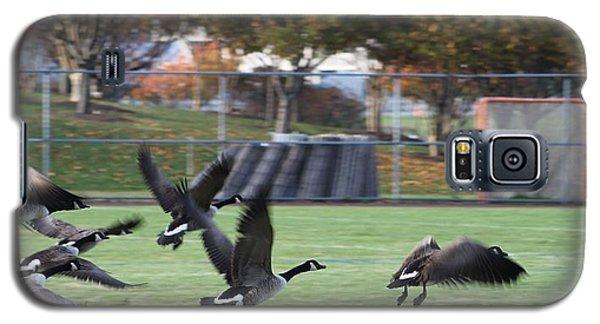 Canadian Geese Taking Flight Galaxy S5 Case by Robert Banach