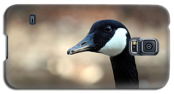 Galaxy S5 Case featuring the photograph Canadian Goose by David Jackson