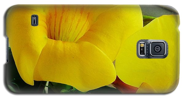 Canario Flower Galaxy S5 Case