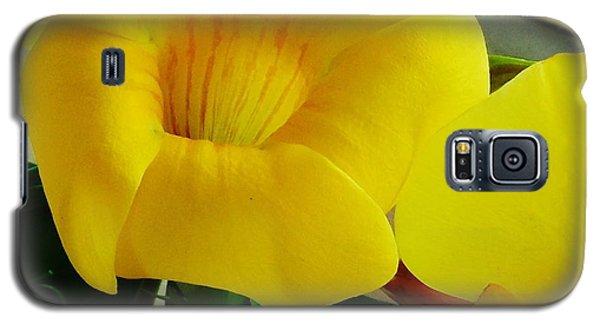 Canario Flower Galaxy S5 Case