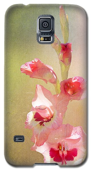 Candy Cane Gladiolas Galaxy S5 Case