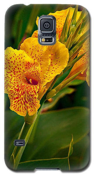 Canna Blossom Galaxy S5 Case by Mary Jo Allen