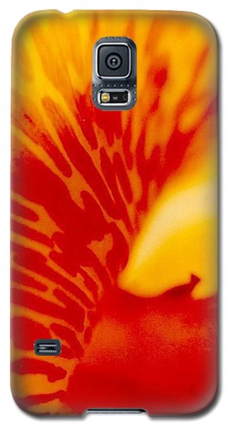 Galaxy S5 Case featuring the photograph Canna Lilly by Michael Hoard
