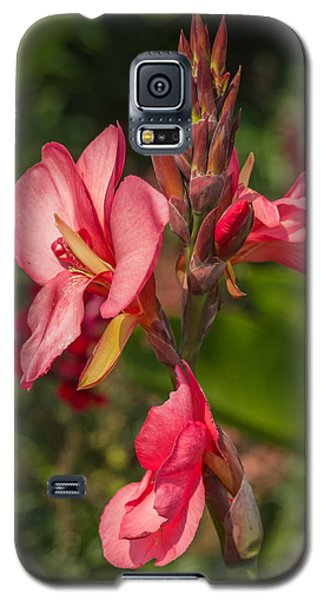Canna Lily Galaxy S5 Case by Jane Luxton