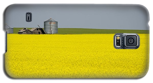 Canola Field Galaxy S5 Case