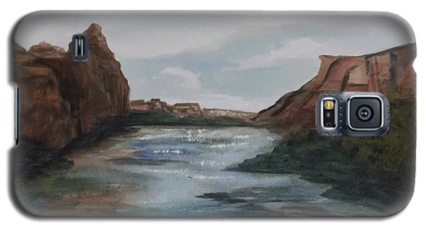 Galaxy S5 Case featuring the painting Canyon De Chelly by Ellen Levinson