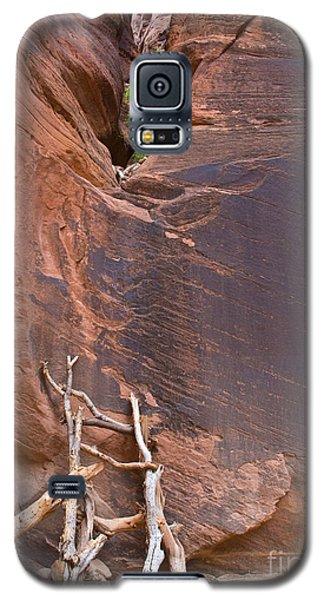 Canyon Ladder Galaxy S5 Case