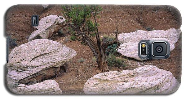 Canyon Pods Galaxy S5 Case