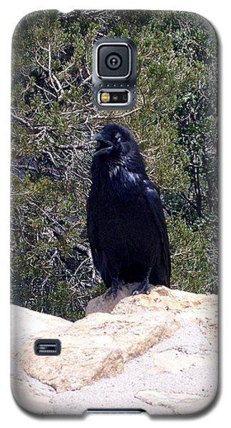 Canyon Raven Galaxy S5 Case