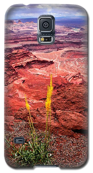 Canyonlands National Park Galaxy S5 Case