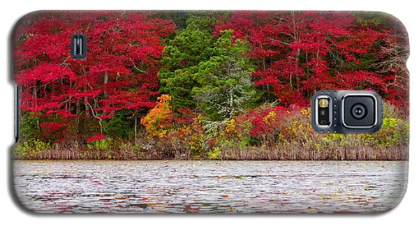 Galaxy S5 Case featuring the photograph Cape Cod Autumn by Dianne Cowen