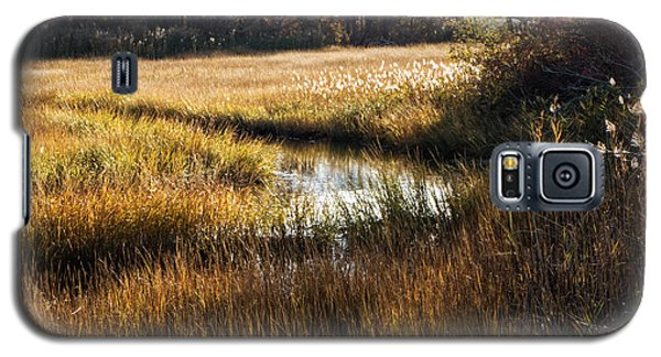 Cape Cod Marsh Galaxy S5 Case