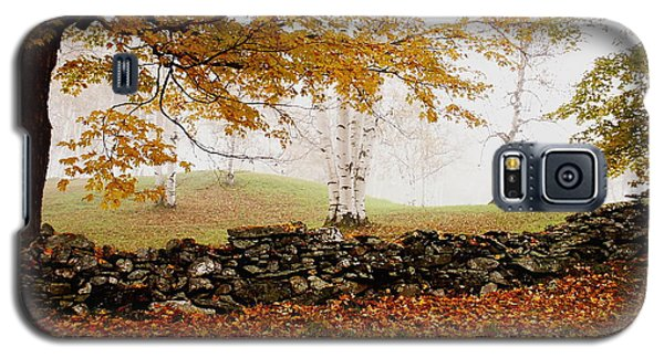 Caper Hill Birch Galaxy S5 Case by Butch Lombardi