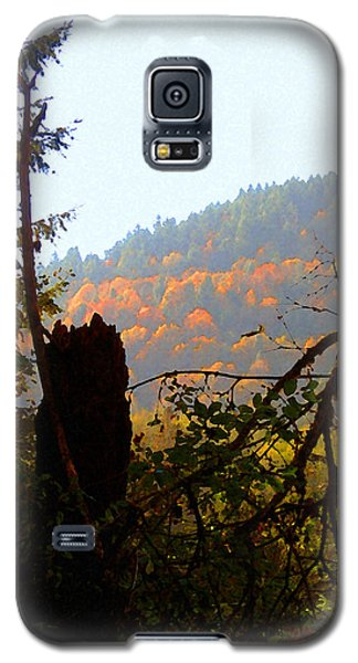 Capitol Forest Galaxy S5 Case