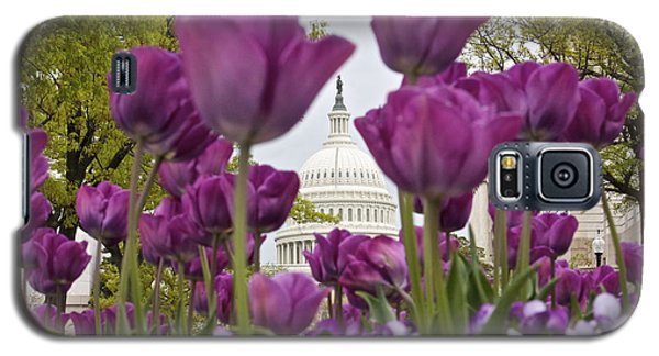 Capitol With Tulips Galaxy S5 Case