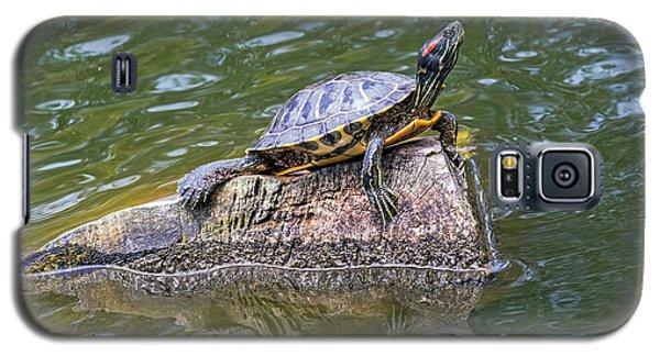 Captain Turtle Galaxy S5 Case
