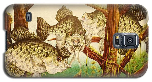 Galaxy S5 Case featuring the drawing Captivating Crappies by Bruce Bley