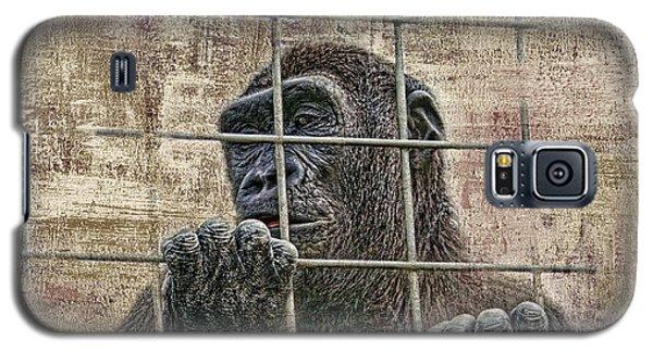 Gorilla Galaxy S5 Case - Captivity by Tom Mc Nemar