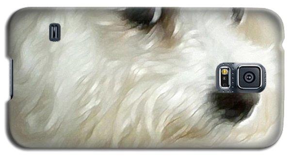 Cara Galaxy S5 Case