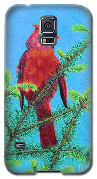 Cardinal Bird Galaxy S5 Case