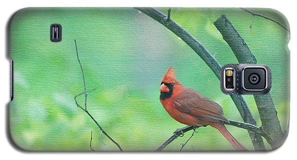 Cardinal In Rain Galaxy S5 Case