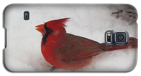 Cardinal In Snow Galaxy S5 Case