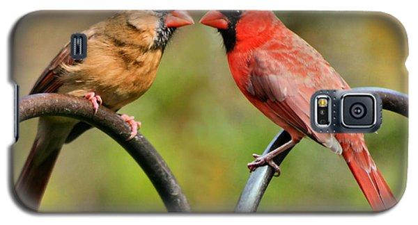Cardinal Love Galaxy S5 Case