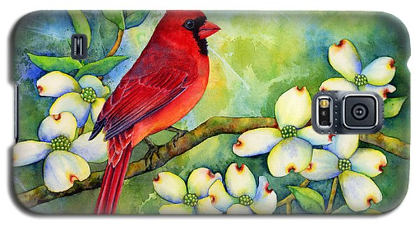 Cardinal On Dogwood Galaxy S5 Case