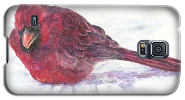 Cardinal Study Galaxy S5 Case