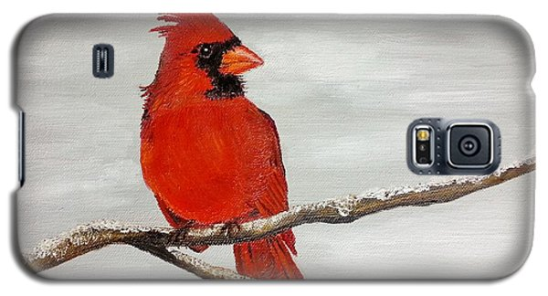 Cardinal Galaxy S5 Case by Valorie Cross