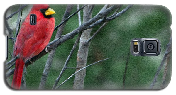 Cardinal West Galaxy S5 Case by Jeff Kolker