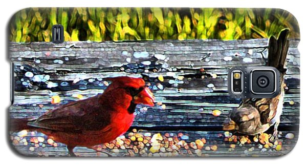 Cardinal Wren Galaxy S5 Case by Terence Morrissey