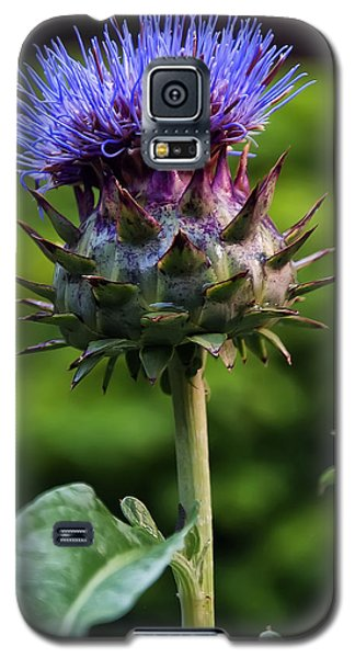 Cardoon Galaxy S5 Case by Chris Flees