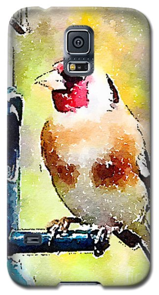 Carduelis Carduelis 'waterfinch' Galaxy S5 Case