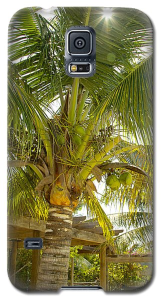 Caribbean Parasol Galaxy S5 Case
