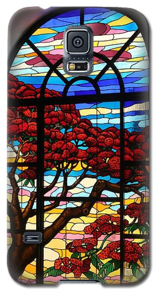 Caribbean Stained Glass  Galaxy S5 Case