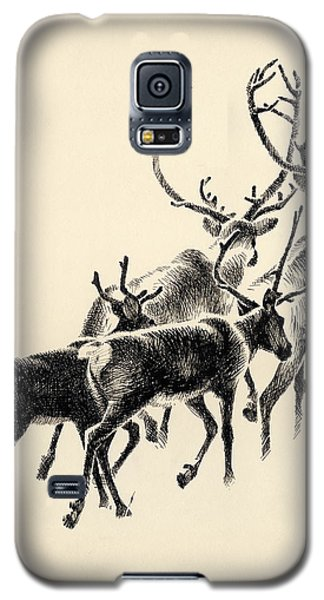 Caribou Galaxy S5 Case