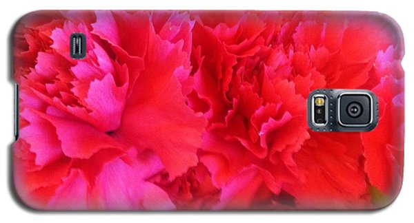 Galaxy S5 Case featuring the photograph Carnation  by Alohi Fujimoto