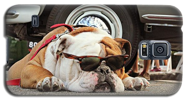 Carmel Cool Dog Galaxy S5 Case