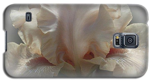 Carmel Galaxy S5 Case by Elaine Teague
