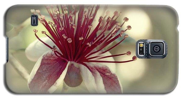 Carmella Galaxy S5 Case by Elaine Teague