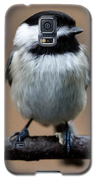 Galaxy S5 Case featuring the painting Carolina Chickadee by John Haldane
