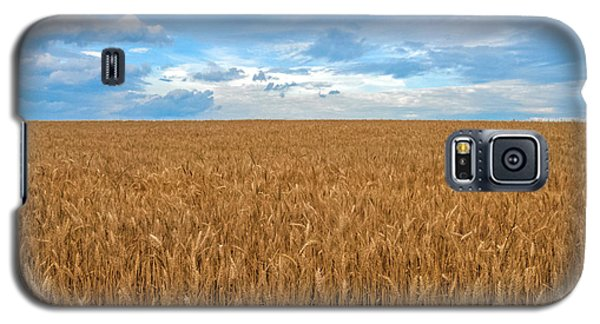 Galaxy S5 Case featuring the photograph Carolina Wheat Field by Marion Johnson