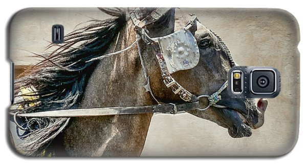 Carriage Horse Galaxy S5 Case by Susi Stroud