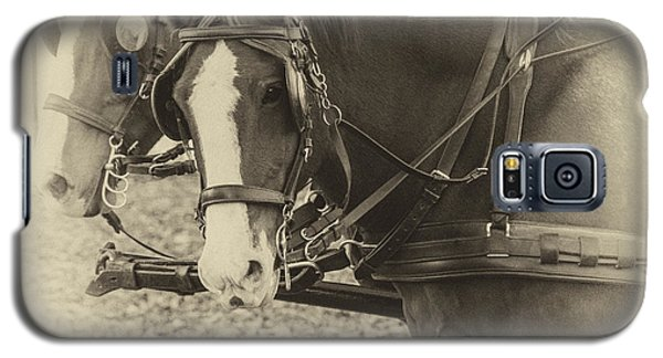 Carriage Horses II Galaxy S5 Case