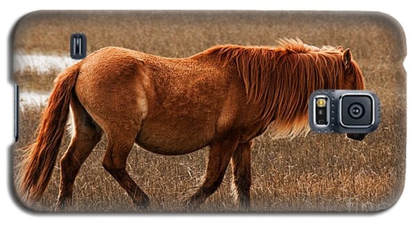 Carrot Island Pony Galaxy S5 Case
